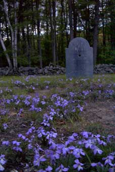 Walter Gilson grave at haunted Gilson Road Cemetery, Nashua, NH